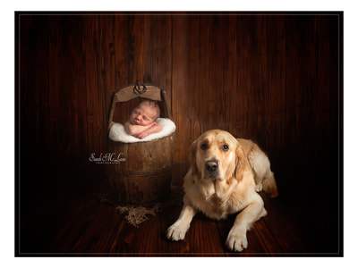 baby and pet pictures in Preston, Lancashire by Sarah Mclean Photography